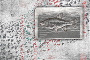 Salmon Framed Prints - Schools 1 Framed Print by Carol Leigh