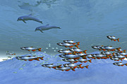 Togetherness Digital Art Prints - Schools Of Fish Swim In The Blue Ocean Print by Corey Ford