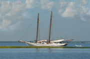 Windjammer Photos Prints - Schooner A. J. Meerwald 5 Print by Joyce StJames