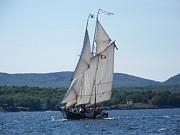 Schooner Lewis R French Sailing Along Print by Joseph Rennie