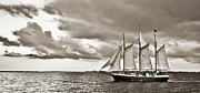 White Digital Art Originals - Schooner Pride Tallship Charleston SC by Dustin K Ryan