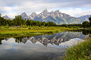 Grand Tetons Framed Prints - Schwabacher Landing Grand Tetons Framed Print by Teresa Zieba