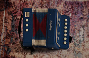 Zydeco Prints - Schylling Accordion Print by Bill Cannon