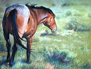 Wild Horse Prints - Scorn Print by Deb LaFogg-Docherty