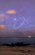 Scorpio In A Night Sky Print by Laurent Laveder