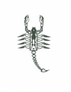Greeting Cards Drawings - Scorpion by Elliot Janvier