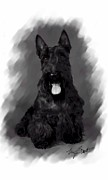Scottish Terrier Digital Art - Scottie Says Sit Stay by Maxine Bochnia