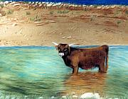 Water Pastels - Scottish Highland Bull by Jan Amiss