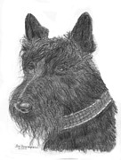 George Bush Drawings Posters - Scottish Terrier Poster by Jim Hubbard