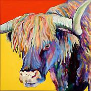 Cow Paintings - Scotty by Pat Saunders-White