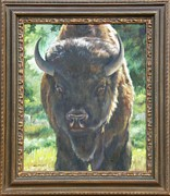 American Bison Originals - Scout FRAMED by Lori Brackett