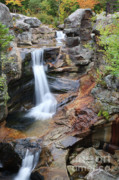 Granite Bedrock Photos - Screw Auger Falls - Maine  by Erin Paul Donovan