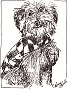 Mutt Drawings - Scruffy The Rescue Dog by Michele Hollister - for Nancy Asbell