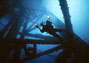 Sea Platform Prints - Scuba Diver Print by Peter Scoones