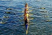 Sculling Framed Prints - Sculling Women Framed Print by David Lee Thompson