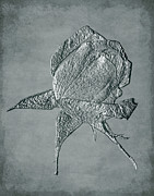 Photo Manipulation Mixed Media Posters - Sculpted Silver Rosebud Poster by Smilin Eyes  Treasures
