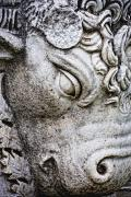 Athena Photos - Sculpture Of Bull, Temples Of Apollo by Carson Ganci