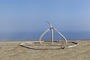 Art Product Prints - Sculpture On Beach Made Of Driftwood Print by Douglas Orton