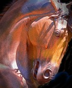 Equine Framed Prints - Sculpture Framed Print by Robert Hooper