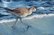 Tern Originals - Sea Bird by Sheila Wedegis