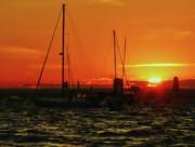Sea Cliff Sunset Print by Jeff Breiman