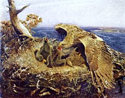 Eagle Painting Framed Prints - Sea Eagles Nest Framed Print by Pg Reproductions