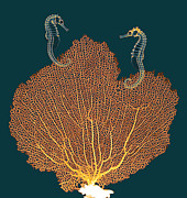 Fan Coral Posters - Sea Fan And Seahorses, X-ray Poster by D. Roberts