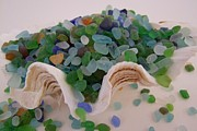 Mary Deal - Sea Glass in Clam Shell - No 2