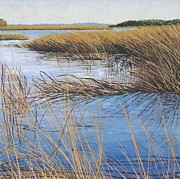New England Ocean Mixed Media Prints - Sea Grass Print by Meg Black