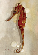 Fish Underwater Paintings - Sea Horse in Watercolor by Anne Beverley