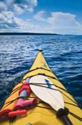 Sea Kayaking Print by Steve Gadomski