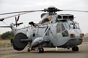 Royal Navy Art - Sea King Helicopter Of The Royal Navy by Luc De Jaeger