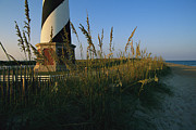 Cape Hatteras Lighthouse Posters - Sea Oats Bending In Wind Near The Cape Poster by Steve Winter