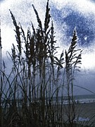 Sea Oats Digital Art Prints - Sea Oats on Tybee Print by Leslie Revels Andrews