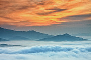 Tranquil Posters - Sea Of Clouds By Sunrise Poster by SJ. Kim