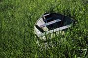 Rowboat Prints - Sea of Grass 2 Print by Wayne Stadler