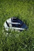 Rowboat Prints - Sea of Grass Print by Wayne Stadler