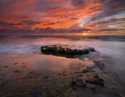 Ebb Photos - Sea of Red by Mike  Dawson
