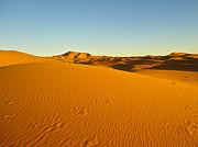 Nabucodonosor Perez - Sea of sand