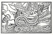 Seizing Prints - Sea Serpent, 16th Century Artwork Print by Cci Archives