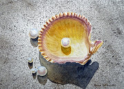Pearl Paintings - Sea Shell and Pearls by Irina Sztukowski
