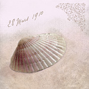 Shell Texture Posters - Sea Shell in Pink Poster by Betty LaRue