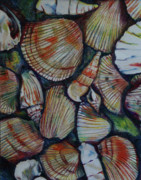 Shells Drawings - Sea Shells in the Sand by Anna Mize Bell