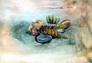 Beaches Drawings Posters - Sea Shells Poster by Mindy Newman