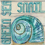 Debbie Brown Prints - Sea Snail Print by Debbie Brown