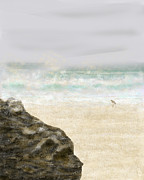 Sandpiper Digital Art Posters - Sea Song Poster by Peri Craig