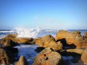Waves Splash Photos - Sea Splash by Mandy Shupp