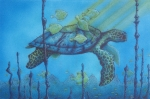 Reptiles Drawings Prints - Sea turtle and fish Print by Erik Loiselle
