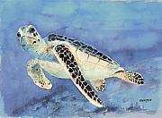 Marine Green Posters - Sea Turtle Poster by Arline Wagner
