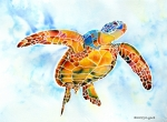 Marine Painting Framed Prints - Sea Turtle Gentle Giant Framed Print by Jo Lynch